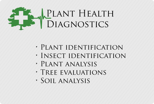 Plant Health Diagnostics